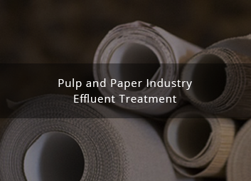 Treatment of pulp and paper industry effluent