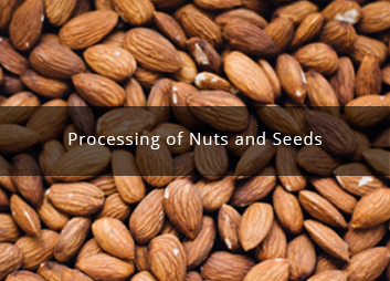 Processing of nuts and seeds
